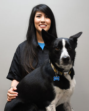 professional groomer salt lake city